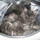 pralni stroj rulz
