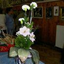 nagelj in lilija